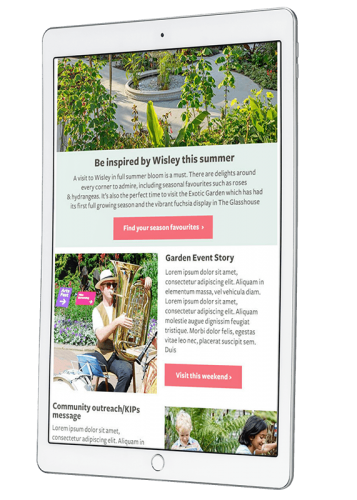 RHS email templates - UX/UI, HTML Email, WordPress, Creative